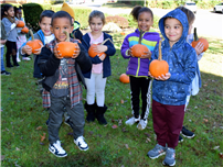 A Pumpkin for Every Student thumbnail138605